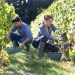 Beneficios sociales y medioambientales del consumo de proximidad